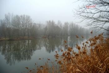 Boira al riu Segre - Alos de Balaguer
