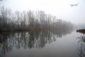 Boira riu Segre - Alos de Balaguer