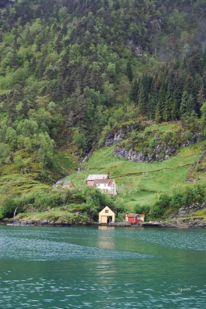 Fiords - Bergen NORUEGA