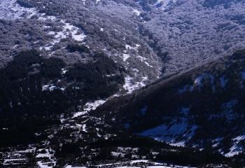 Fotos Aldehuela de Ágreda