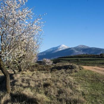 Moncayo primaveral