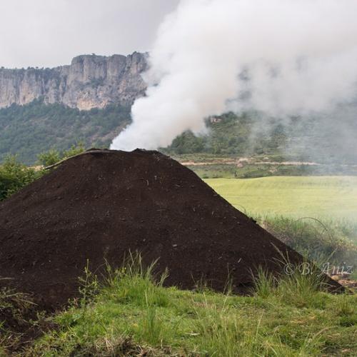 Oficio de carbonero