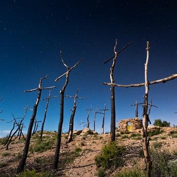 El bosc de les Creus sota la Llune plena