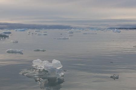 Svalbard Glaciar Monacobreen