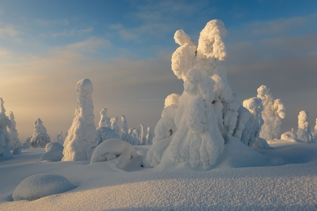 Riisitunturi, Finland, February 2013.