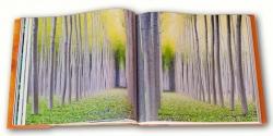 foto de Koldo Badillo en el libro