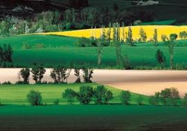 "portfolio ""geometries"" title: ""Colors of Navarre"""