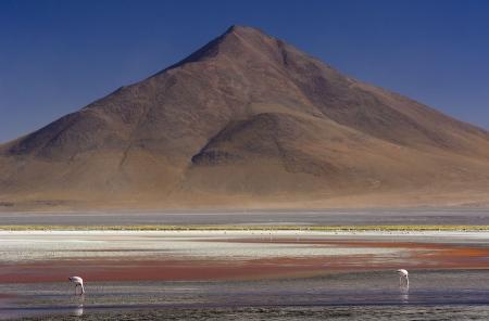 Oleos de Bolivia