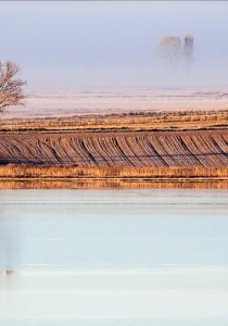 Paisaje al amanecer, junto a la laguna.Imagen David Pérez Hens