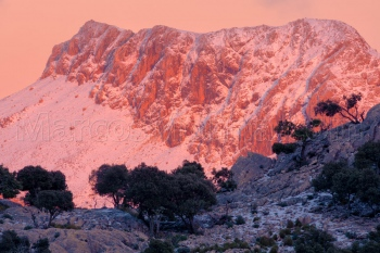 The last light of the day illuminates the snowy puig de Massanella. Tramuntana mountains, Majorca