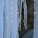 ice legs