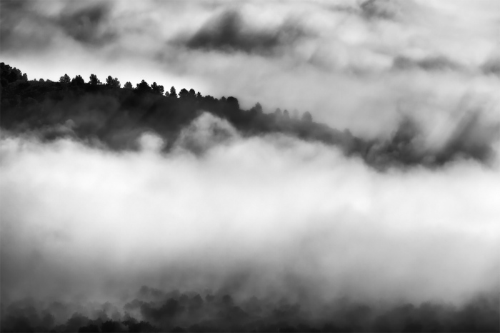 David Frutos Egea · Fog in the Valley