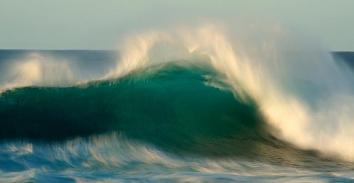 Daniel Montero · la ola verde