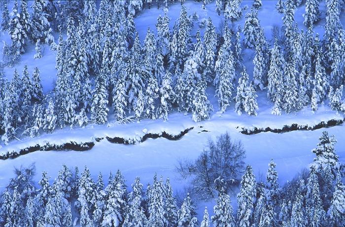 Juan Santos · Azules de invierno