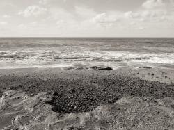 estudio 4835. Riba de Pachón. 2013