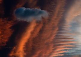 Cumulus humilis over altocumulus lenticularis