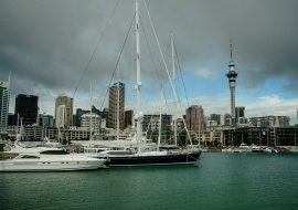 Skyline from Viaduct Harbour, Auckland
