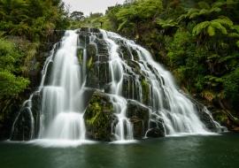Owharoa Falls, Karangahake Gorge Reserve, Waikato