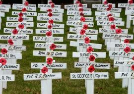 Military cemetery. Stratford. New Zealand