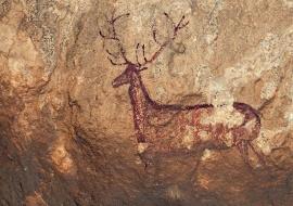 Deer cave painting. Sierra de Guara