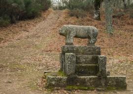 Verraco. La Alberca. Reserva de la Biosfera de las Sierras de Béjar y Francia