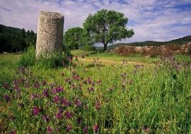 Roman milestone. SIlver Route