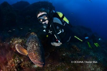 Alexandra Cousteau, buceando en Cala Galiota, Parque Nacional de Cabrera, islas Baleares, España. Actos para apoyar la ampliación del Parque de Cabrera. Octubre 2013.