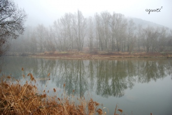 Boira al riu Segure - Alos de Balaguer