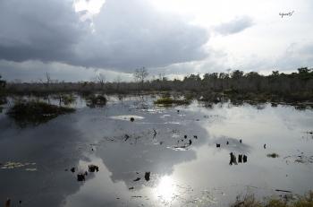 contrallum - Angkor - Siem Rap - Cambodja