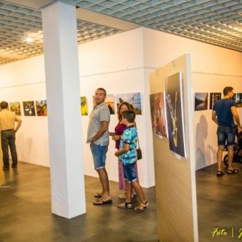 4ª Exposición Colectiva en Minas de Riotinto