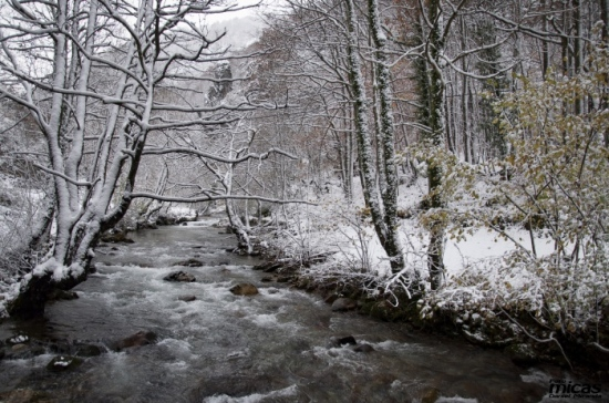 Precioso invierno