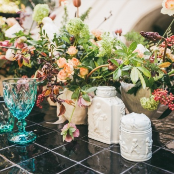 CALISTA ONE & THE SPRING TABLE