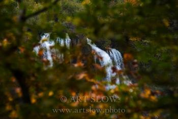 Mirada entre Hojas - Parque Nacional de los Lagos de Plivitce, Croacia. Edición: 10/10 + 2P/A