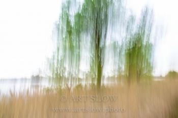 Trazos verdes - Mig de dos rius, Sant Pere Pescador, Parc Natural dels Aiguamolls de l'Empordà, Girona, Catalunya. Edición: 10/10 + 2P/A