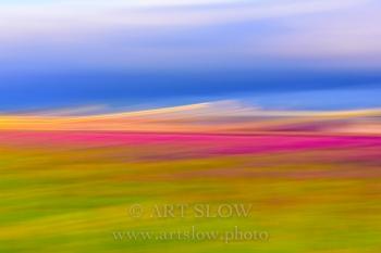 Esencia de colores -  Leiden, Holanda. Edición: 09/10 + 2P/A