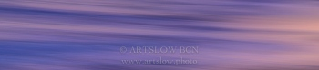 Mediterráneo púrpura, Gavá (Barcelona); ref: 1604-9194