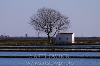 ULLS- Hemidelta Sur, Delta del Ebro, Tarragona, Catalunya. Edición: 09/10 + 2P/A