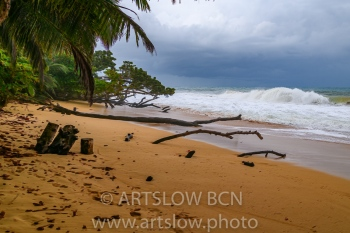 2002-9410-Natura Tropical e Imaginación 5, Bocas del Toro,Isla de Colón, Panamá