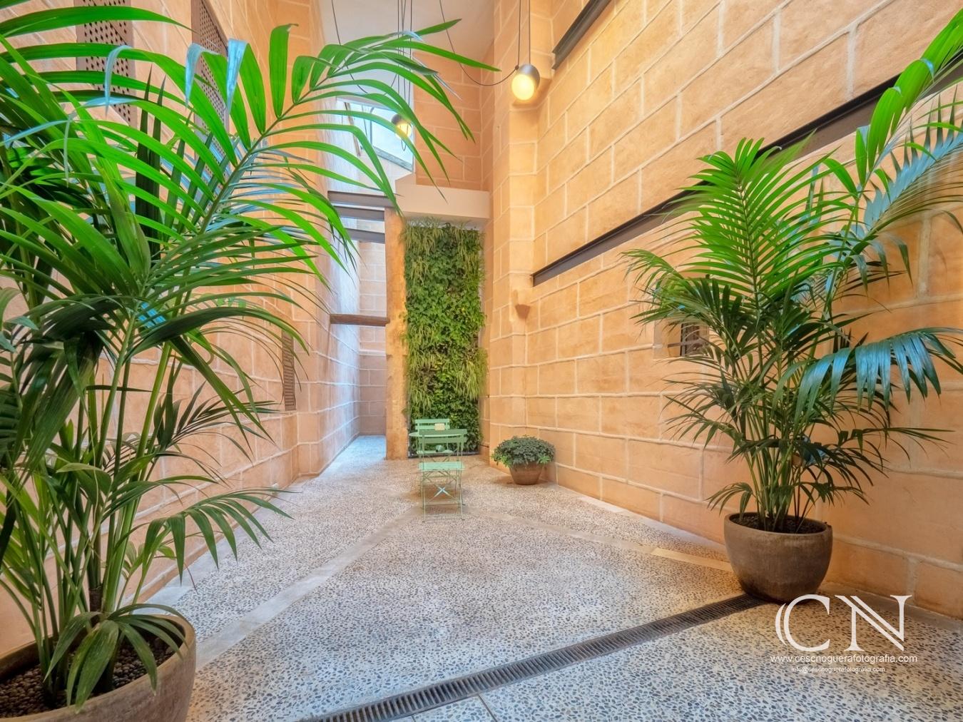 Casa a Rambla de Palma - Cesc Noguera Fotografía, Cuando la fotografía es una pasión, Architectural & Interior design photographer / Landscape Photography