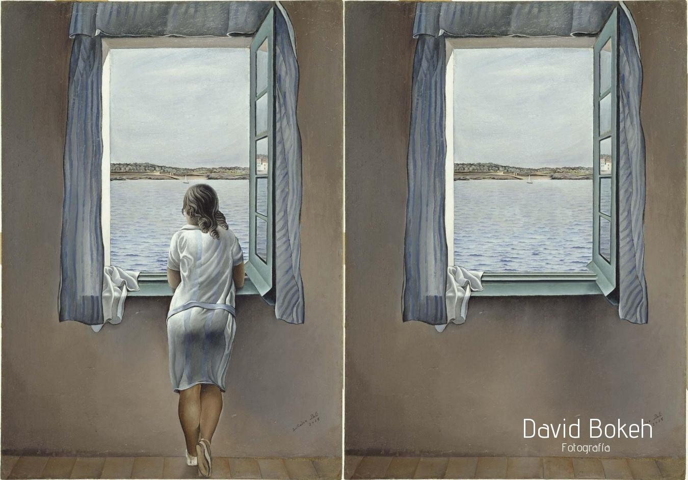 El arte de quedarse en casa - David Bokeh, Fotografía