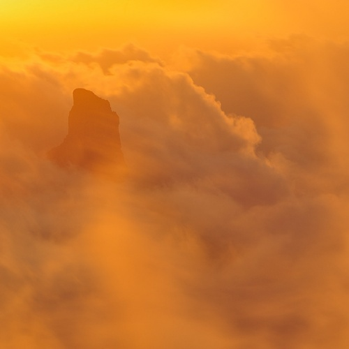 Canarias Salvaje