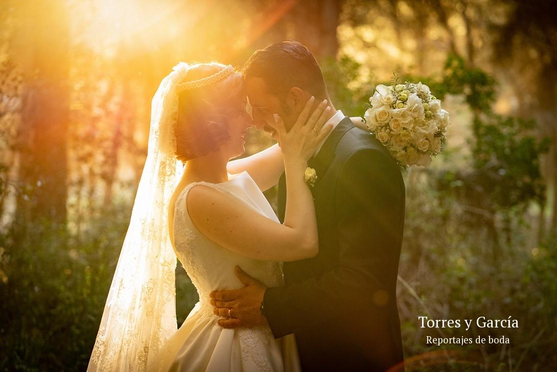 luz de contra en el bosque - Fotografías - Libros y reportajes de boda diferentes.