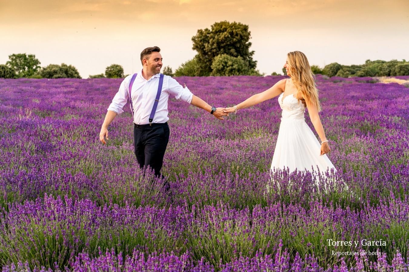 reportaje en los campos de lavanda - Fotografías - Libros y reportajes de boda diferentes.
