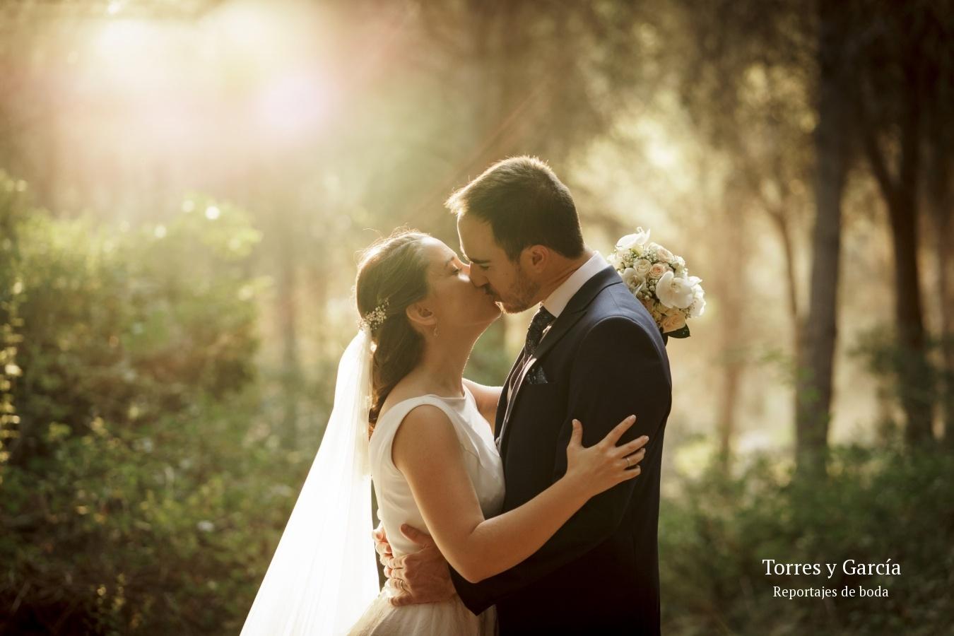 contraluz entre los árboles - Fotografías - Libros y reportajes de boda diferentes.