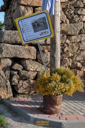 Decoración San Martín de la Vega foto 5