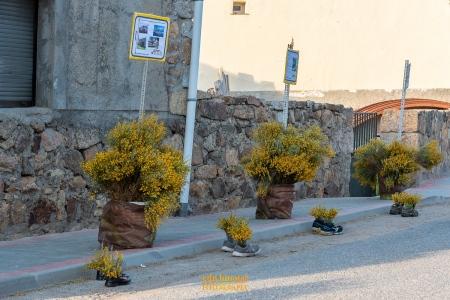 Decoración San Martín de la Vega foto 23