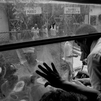 Camello (autobús). La Habana, Cuba.