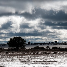 19-Nubes