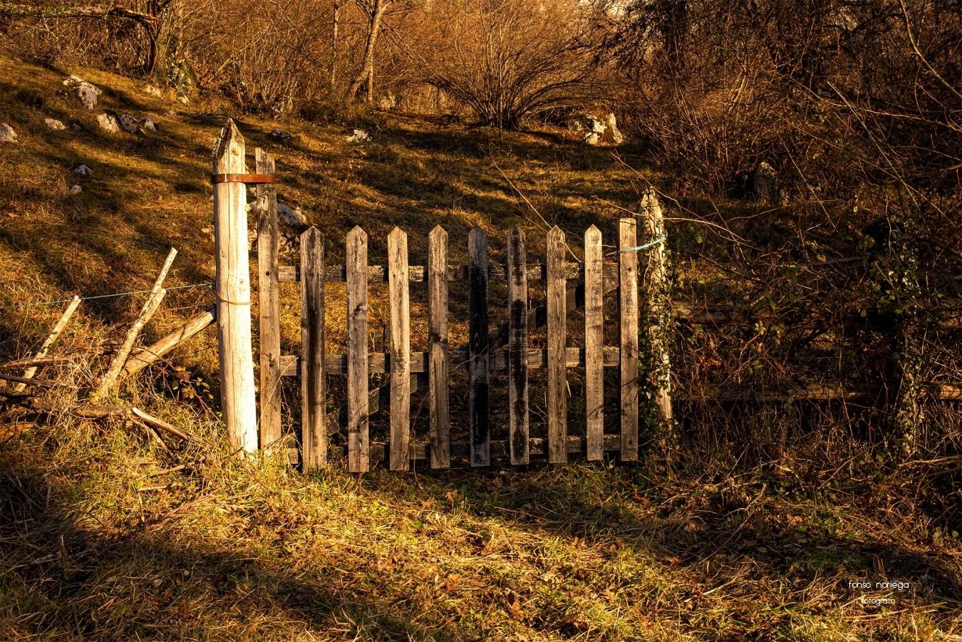 puertas al campo ? - color - fonso noriega, fotógrafo
