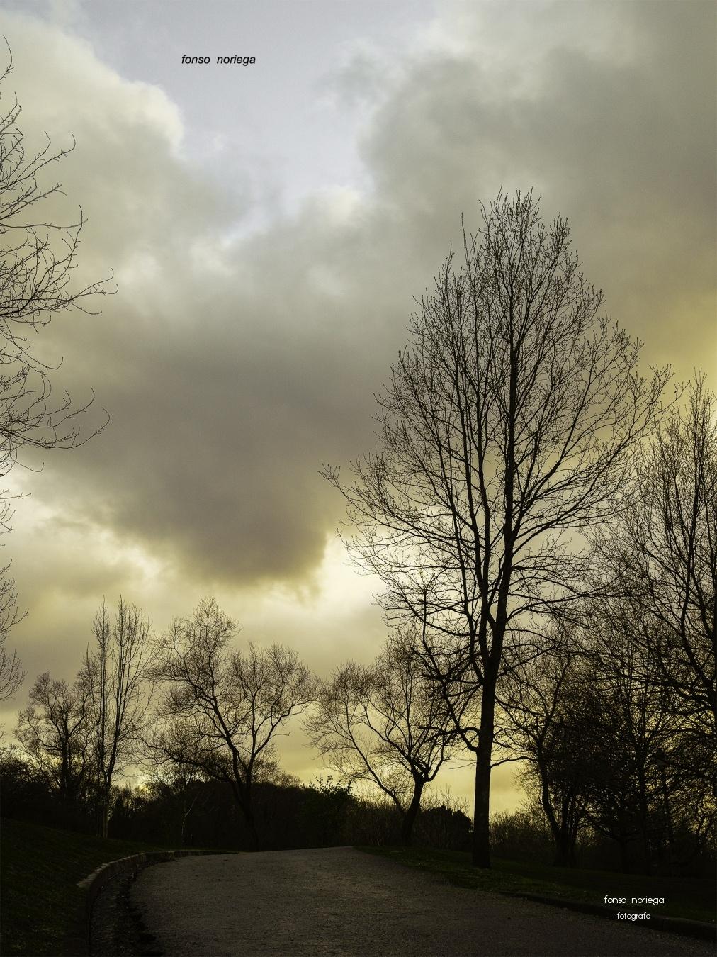 atardece - color - fonso noriega, fotógrafo